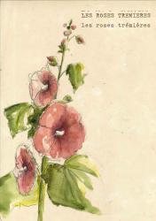 Lot de 5 cartes fleurs et enveloppes
